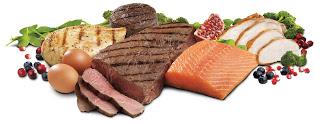 Proteinovi hrani